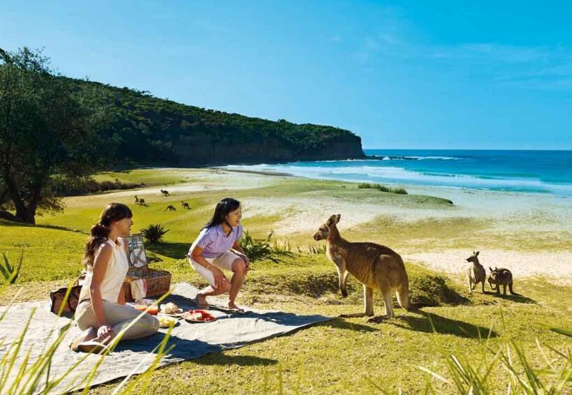 澳大利亚新西兰11日游
