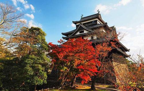 日本-本州双飞6日游