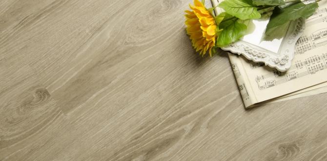 小编跑市场:木地板实用攻略